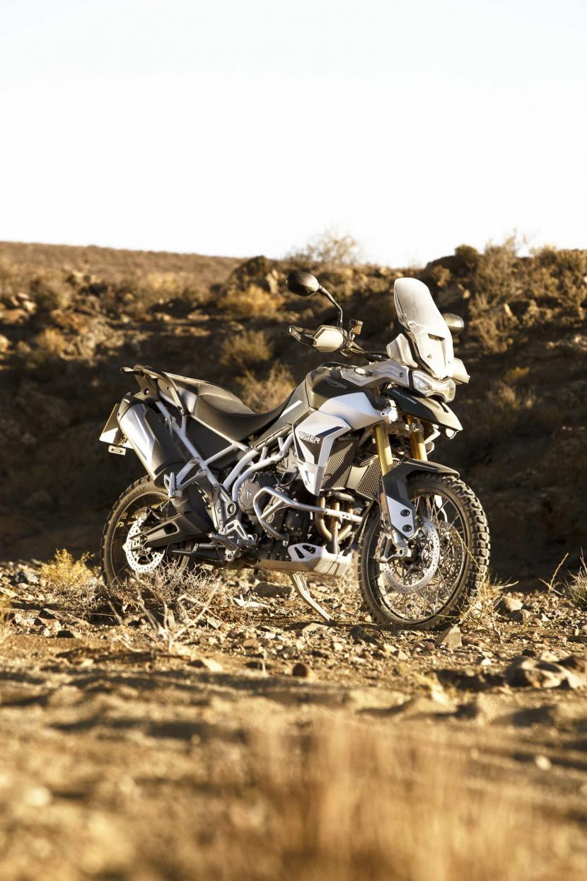 tiger-900-rally-pro-20MY-AZ4I4440-AB-1