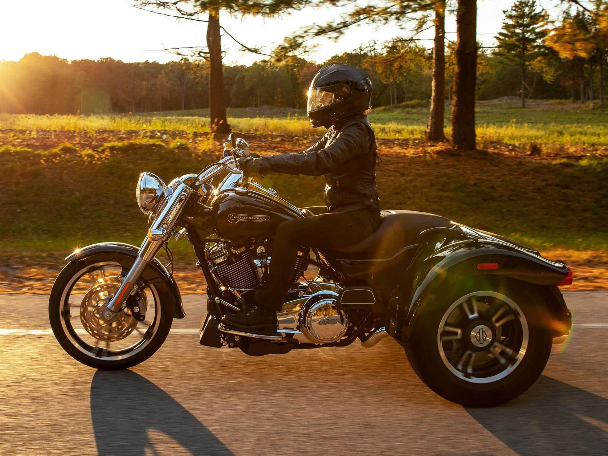 Harley-Davidson® Freewheeler™