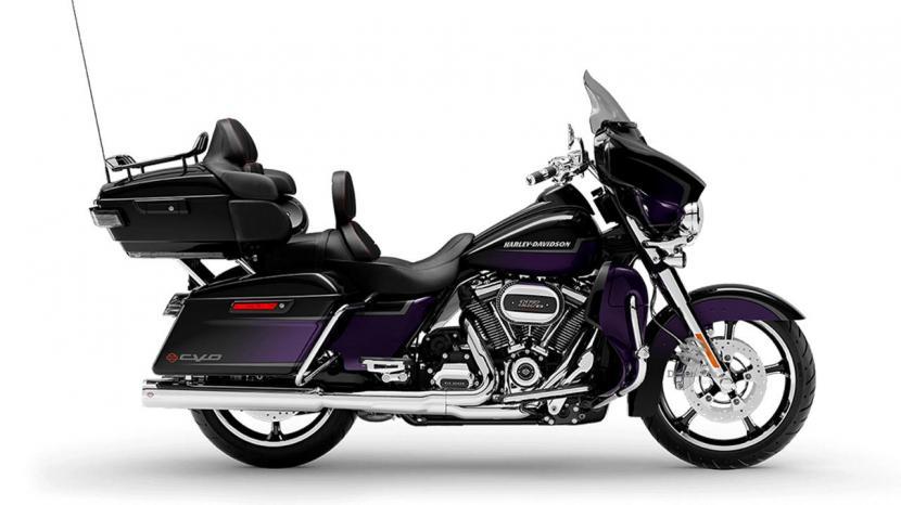 Royal Purple & Royal Black Fade